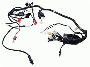 Wiring Harness  Shineray Xy250st
