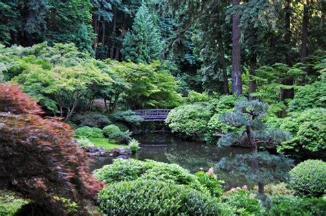Teich Bepflanzen! Mehr Als 70 Ideen! Archzinenet