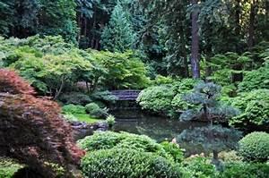 Teich Im Garten : teich bepflanzen mehr als 70 ideen ~ Lizthompson.info Haus und Dekorationen