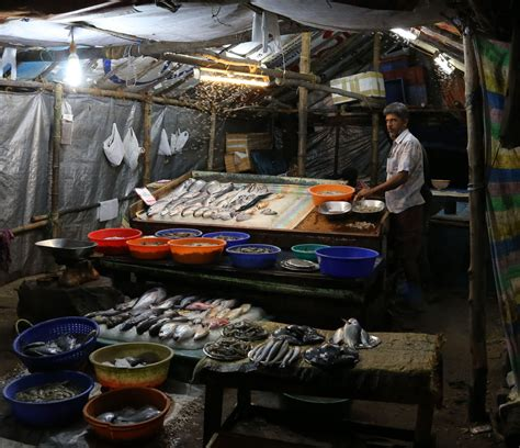 ceramic shop india travel forum indiamike fish shop india travel forum indiamike com