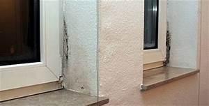 Schimmel In Wohnung Mietrecht : schimmel wann sie die miete mindern k nnen ~ Watch28wear.com Haus und Dekorationen