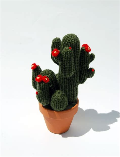kaktus mit blüten kaktus strickkaktus mit roten bl 252 ten blumen kaktus h 228 keln kaktus und kaktus gestrickt