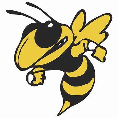Yellow Georgia Tech Jackets Transparent Logos Svg
