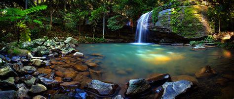 rainforests  waterfalls