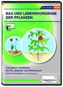 Bau Der Pflanze : aus der welt der tiere ivo haas lehrmittelversand verlag ~ Lizthompson.info Haus und Dekorationen