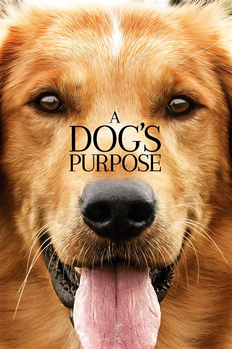 dogs purpose  posters