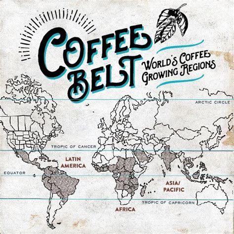 djournal coffee guide images  pinterest coffee