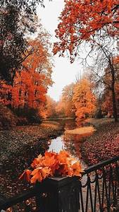 8 best things about fall autumn scenery fall wallpaper