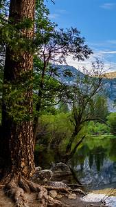 Yosemite, National, Park, Wallpaper, Hd, 58, Images