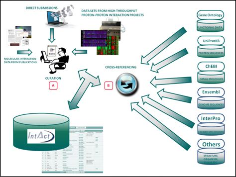 data input data input 28 images anthropometric survey pressim sintef star data connect reviews