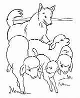 Pecore Pastore Gregge Flock Bauernhoftiere Ariete Capre 8210a Cani Pecora Agnelli Caprette Konabeun 1807 Honkingdonkey Coloringhome Kleurplaat sketch template