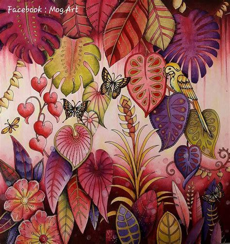 magical jungle colour  world magical jungle