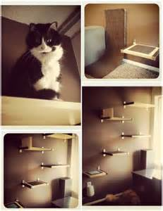 cat shelves 20 purrfect diy projects for cat owners diy crafts