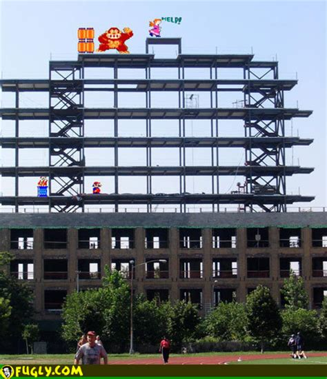 Real Life Donkey Kong Funny Pictures