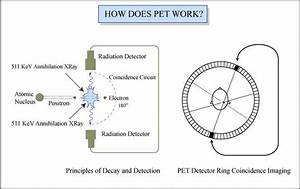 How Pet Works