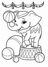 Coloring Elephant Printable Circus Animal Coloringtop sketch template