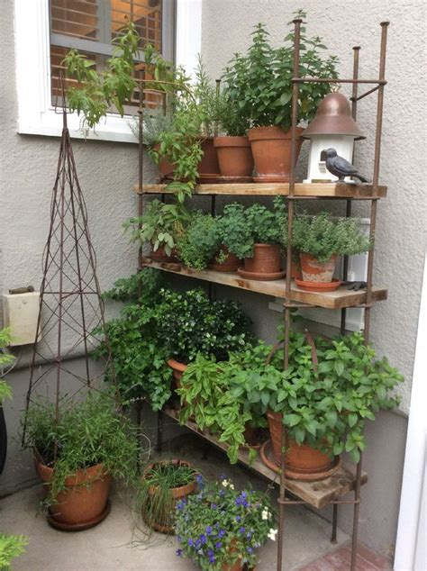 Best 25+ Balcony Herb Gardens Ideas On Pinterest