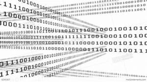 Binary Code Grid On White Background Stock Animation | 6240307