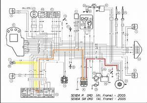 Bajaj Pulsar Wiring Diagram