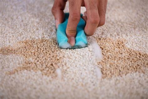 flecken aus teppich entfernen so entfernen sie alle flecken aus ihrem teppich experto de