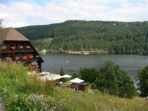 Scenic Tour  Black Forest Tours  To Go