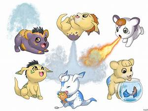 Pokemon Numel Evolution Images | Pokemon Images