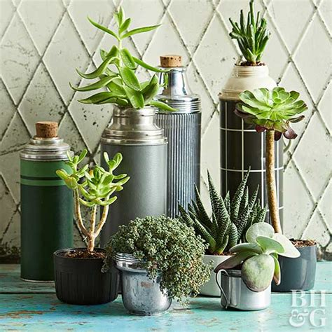 year round indoor garden