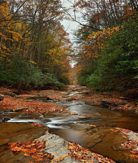 183 best west virginia almost heaven the and