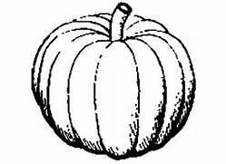 Pumpkin Seed Clipart D...