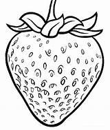 Strawberry Coloring Printable Fruit Plant Strawberries Drawing Chosen Illustrations Coloringpagesfortoddlers Fruits Cartoon Sheets Gambar Clipart Getcolorings Disimpan Dari sketch template