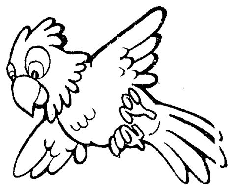 parrot clipart black and white parrot clip cliparts co