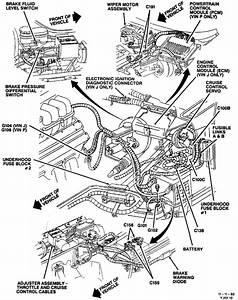 81 Corvette Vacuum Diagram  Corvette  Wiring Diagrams