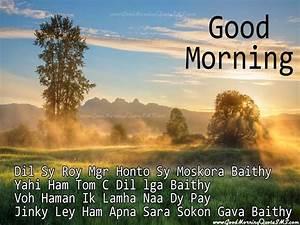 Good Morning Hindi Shayari for Friends - Hindi Gud mrng ...