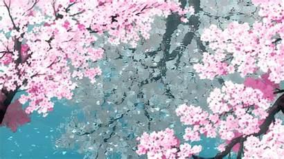 Anime Gifs Background Animated Flying Aesthetic Sakura