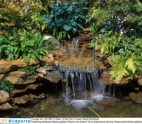wasserlauf im garten details zu 0003158572 gartengestaltung wassergarten wasser im garten teich gartenteich biotop