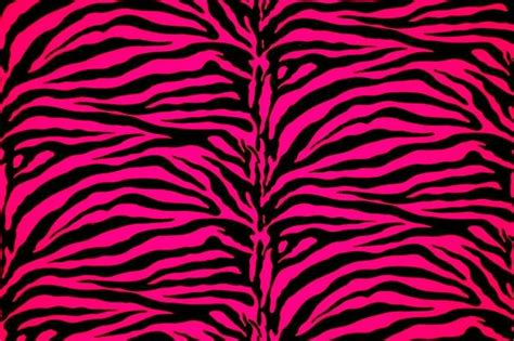 Pink And Black Zebra Print 6 Background Hdblackwallpapercom