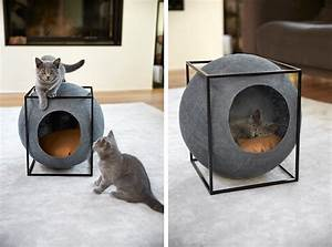 Cat, House, Design, Images, -, Modern, Cat, Houses, Of, 2021