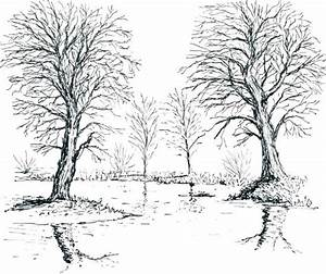 Winter Tree Coloring Pages - Kids Coloring Page Gallery
