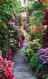 Best 25+ English cottage gardens ideas on Pinterest beautiful flower gardens pinterest