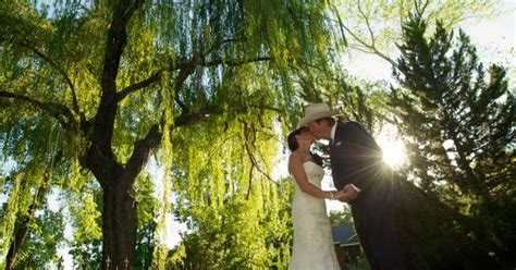 groom weeping willow tree at newcastle
