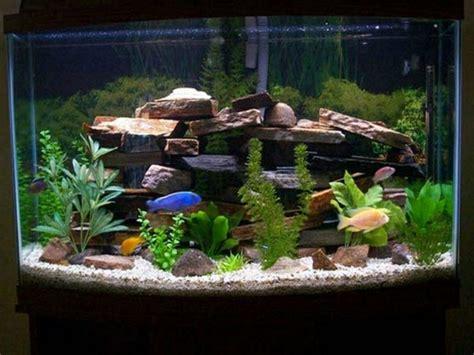 aquarium als raumteiler benutzen  beispiele
