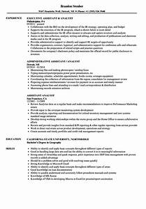 Resume Sample Administrative Support Project Management Assistant Analyst Resume Samples Velvet Jobs