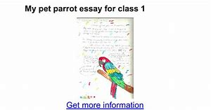 My pet dog essay for class 5