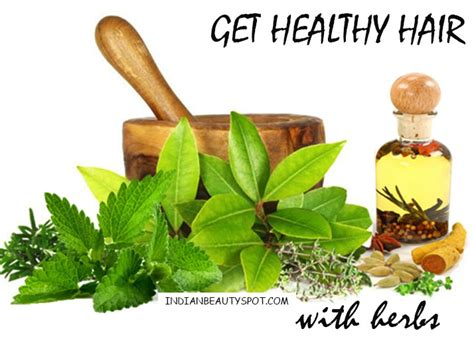 Get Healthy Hair With Herbs The Indian Spot