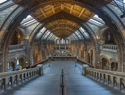 Museum History Natural London Interesting Facts Hall