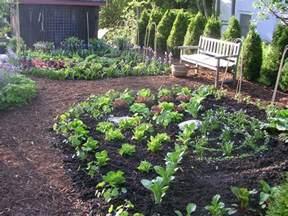 kitchen garden design ideas expert design consultation ecker ogden