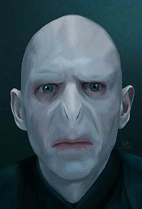 voldemort face - Google Search | Harry Potter Halloween ...