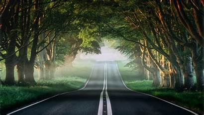 4k Road Forest Misty Wallpapers 1600 1080