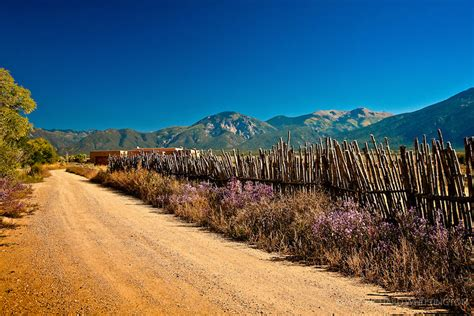 mexican landscaping new mexican landscape coyote fence el prado new mexico richard whittington photography