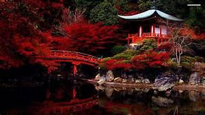 38 Beautiful Japan Wallpapers